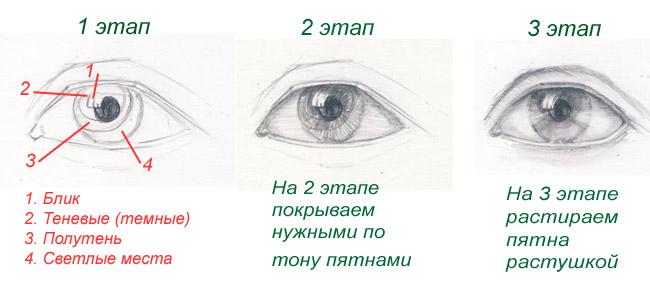 Шаблон рисования глаз